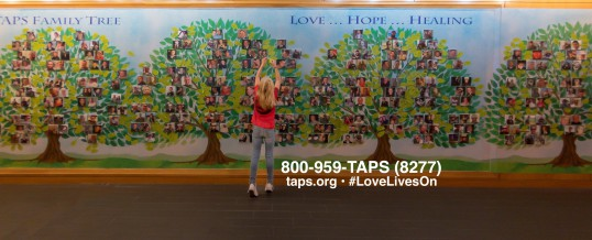 Grieving the loss of a military loved one? Get in touch with TAPS