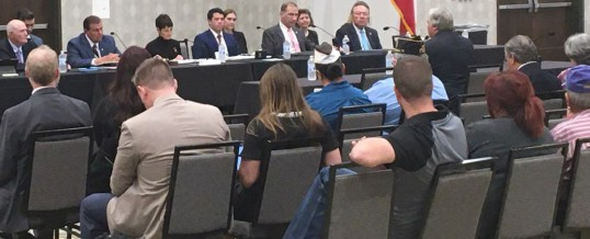 Veterans Affairs & Border Security Hearing attracts 200
