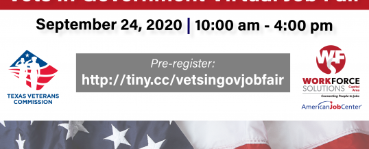 Vets in Government Virtual Job Fair