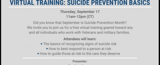 Endeavors and VA Suicide Prevention Virtual Training